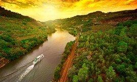 Nehir Turları