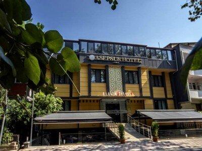 Asepsus Hotel Balıkesir Gönen Gönen Merkez