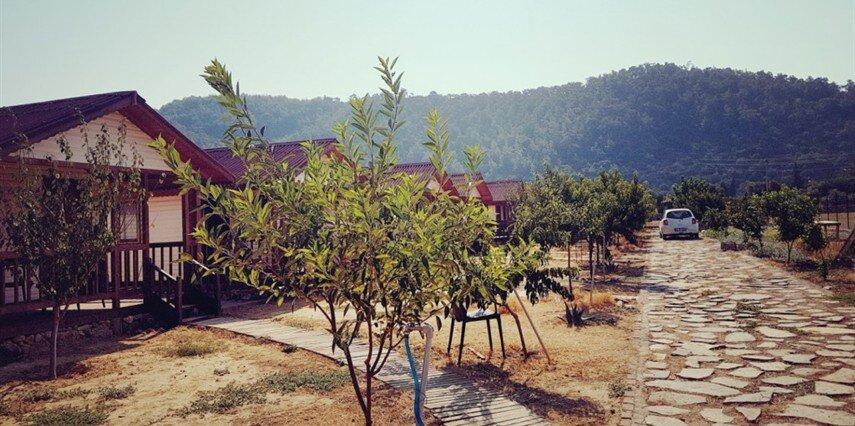 Fesleğenbükü Kamp Muğla Milas