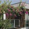 Green Garden Resort Antalya Alanya