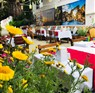 Hellen Hotel Side Antalya Manavgat