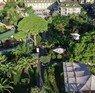 Zena Resort Antalya Kemer