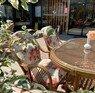 Zeynel Hotel Antalya Antalya Merkez
