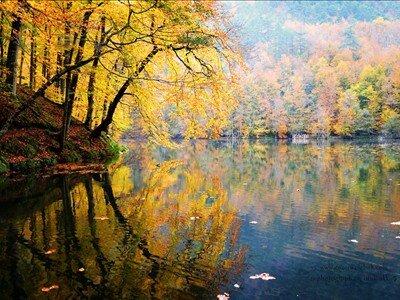 29 Ekim Özel Günübirlik Yedigöller Turu