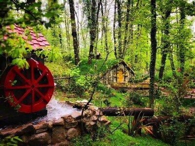 Günübirlik Hobbit Evleri Ormanya Tabiat Parkı Maşukiye Sapanca Turu