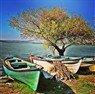 Günübirlik Bursa Gölyazı Turu