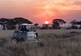 Tanzanya'da Safari ve Zanzibar'da Okyanus Turu
